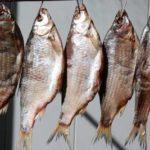 Как правильно сушить рыбу дома