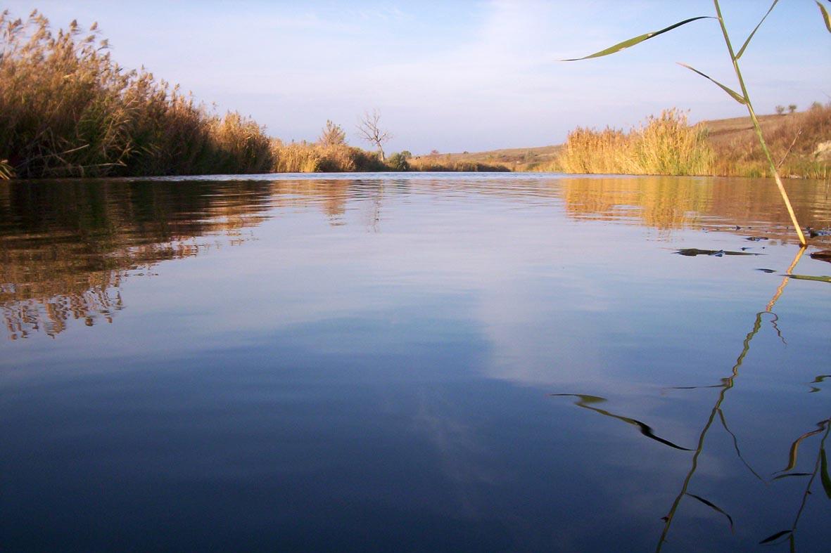 Как ловить рыбу в осенней реке